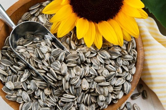 Beneficios-de-las-semillas-de-girasol-2